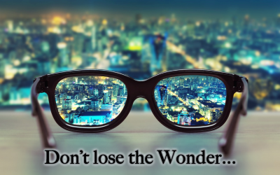 Don't Lose the Wonder
