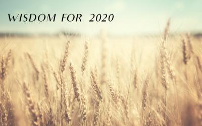 Wisdom for 2020